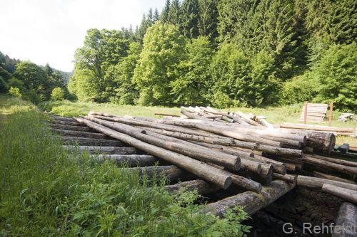 Trockene Holzlagerfläche - ULT, St. Andreasberg