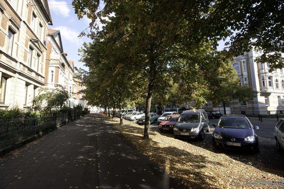 Allee des Siedlungsbereichs (HEA), Braunschweig