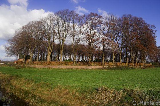 Sonstiger gehölzreicher Friedhof (PFR), Neermoor