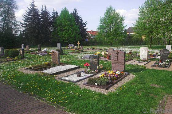 Gehölzarmer Friedhof (PFA), Braunschweig