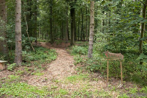Waldfriedhof (PFW), Heiningen