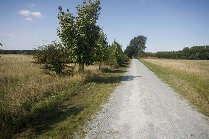 Weg mit wassergebundener Decke (OVW), Braunschweig