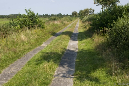 Betonspurweg (OVW), Flögeln