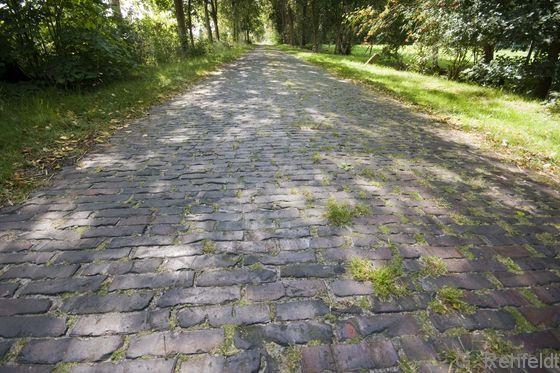 Straße, Natursteinpflaster (OVSp), Zetel