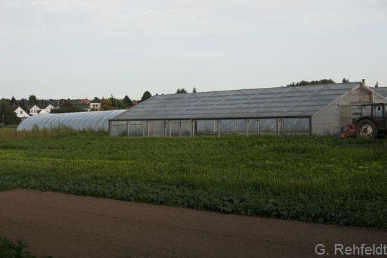Gewächshauskomplex (OGP), Wolfenbüttel