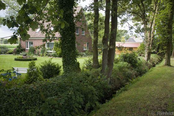 Rest einer Baum-Wallhecke als Gartengrenze (HWB), Meerhausen