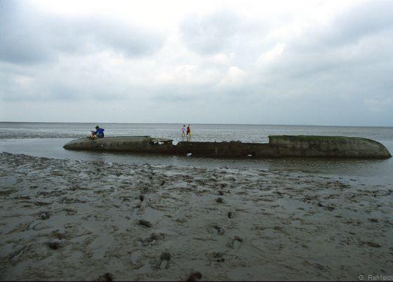 Schiffswrack (KXW), Schillig
