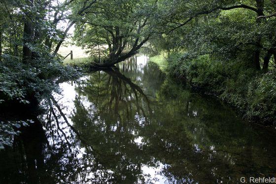 Naturnaher Tieflandfluss mit Sandsubstrat (FFS), Lachte Lachtehausen