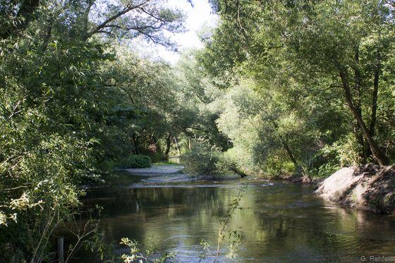 Naturnaher Berglandfluss mit Grobsubstrat (FFB), Oker Schladen