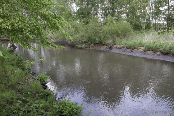 Fluss-Staustrecke mit naturnaher Uferstruktur - FFA, Innerste Sehlde