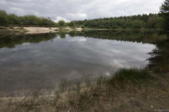 Naturnahes nährstoffarmes Abbaugewässer (SOA), Wietmarschen