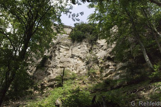 Natürliche Kalkfelsflur (RFK), Hohenstein