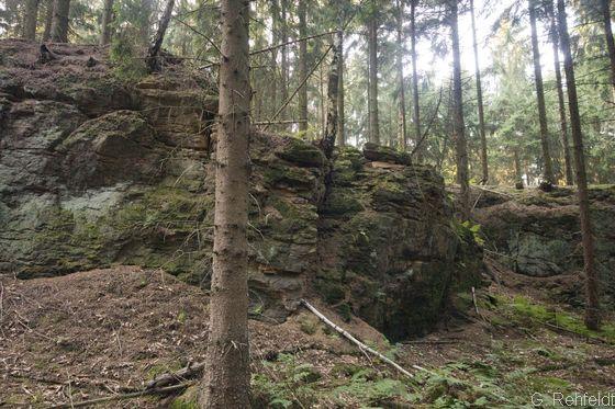Natürliche Felsfluren aus basenreichem Silikatgestein (RBR), Bodenstein