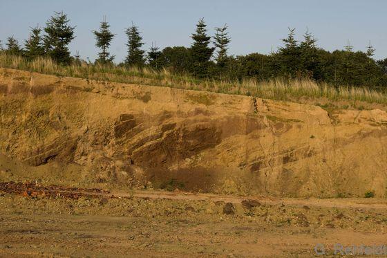 Steilwand mit Sand- und Lehmschichten (DSM), Natrup-Hagen